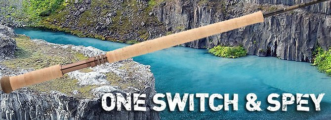 One Switch & Spey