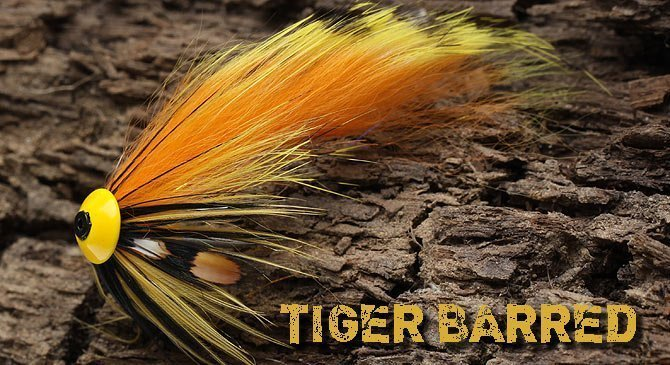 Tiger Barred zonker Strips