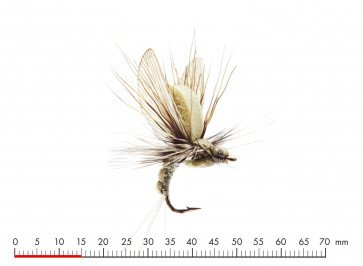 J:Son Mayfly Emerger  Light Olive