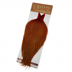 Whiting Coq de Leon Badger  Burnt Orange