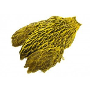 FutureFly - FW Hen Cape - Yellow