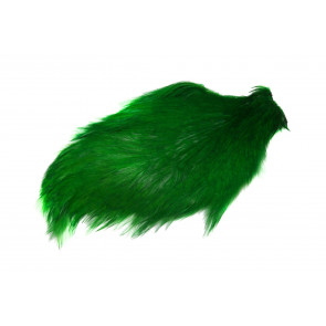 Chinese Cock Cape Green Highlander