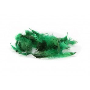 Teal Flank Feather Green