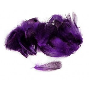Teal Flank Feather - Purple
