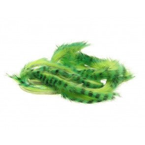 Tiger Barred Magnum Mahi Green/Black over Chartreuse