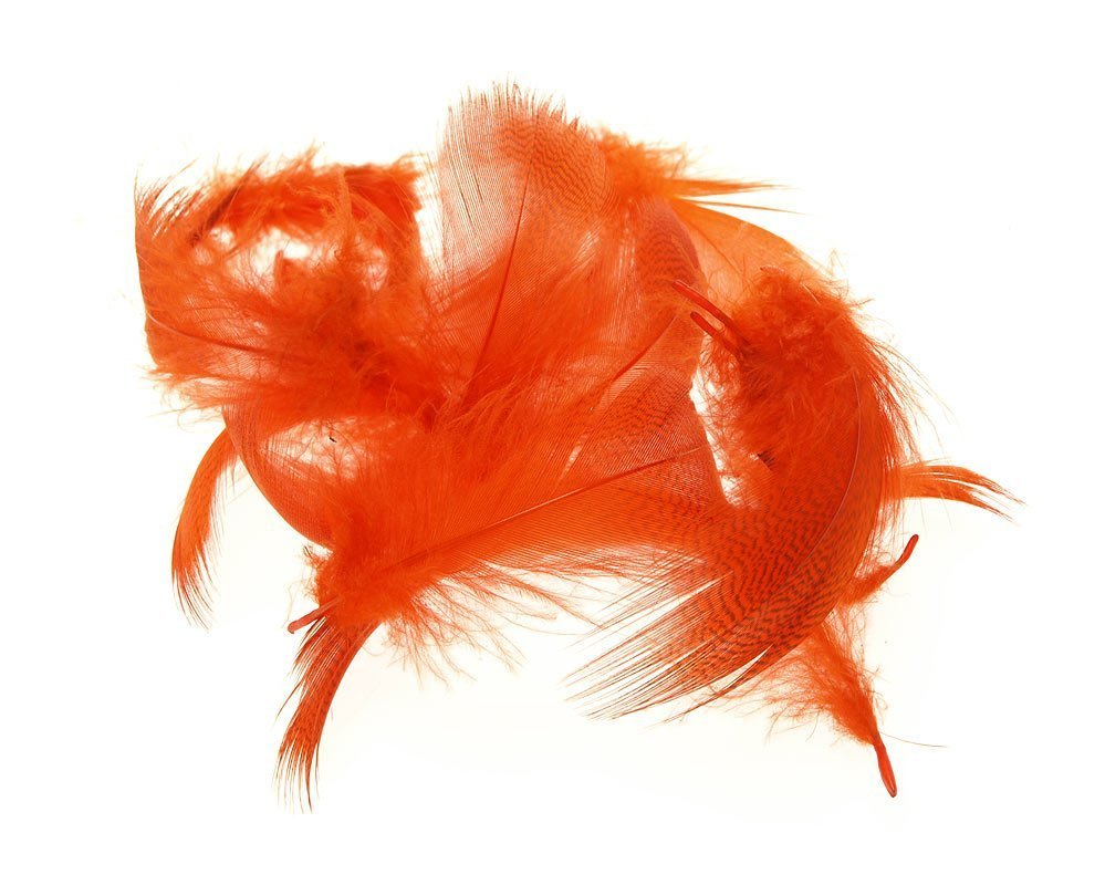 Image of   Mallard flank - orange