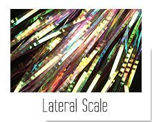 Lateral Scale
