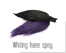 Whiting Hane Spey