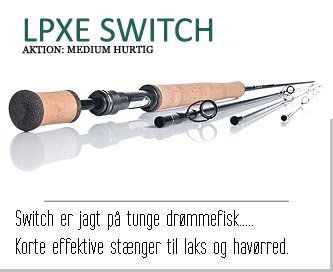 Guideline LPXE Switch